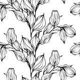 Vector background with hand drawing black and white leaves Stock Photos