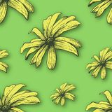 Vector background with hand drawn flowers. Royalty Free Stock Photography