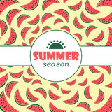 Vector background with hand drawn watermelon  and label. Summer season background. Vector background with hand drawn watermelon  and label. Summer season Stock Images