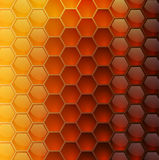Vector background with honeycombs Royalty Free Stock Photography