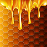 Vector background with honeycombs and honey Stock Photos