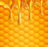 Vector background with honeycombs and honey. The  vector background with honeycombs and honey Stock Photography