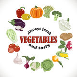 Vector background with isolated vegetables in a circle and an inscription inside Royalty Free Stock Image