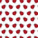 Vector background of Ladybug Royalty Free Stock Image