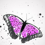 Vector background with leopard  butterfly Royalty Free Stock Images