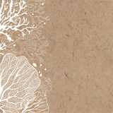 Vector background with marine plants on kraft paper. Royalty Free Stock Image