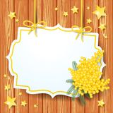 Vector background with mimosa and label Stock Image