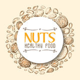 Vector background with nuts arranged in a circle Stock Image