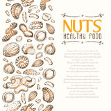 Vector background with nuts arranged vertically Stock Photo