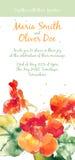 Vector background with orange watercolor nasturtium Royalty Free Stock Image