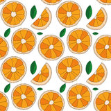 Vector background. Oranges fruit seamless pattern Royalty Free Stock Photography