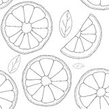 Vector background. Oranges fruit seamless pattern Stock Image