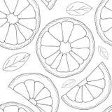 Vector background. Oranges fruit seamless pattern Stock Photos