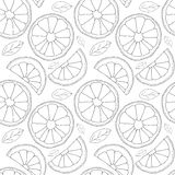 Vector background. Oranges fruit seamless pattern Royalty Free Stock Image