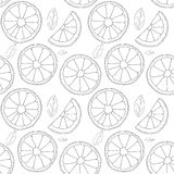 Vector background. Oranges fruit seamless pattern Stock Photos