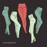 Vector background with pants Stock Photos