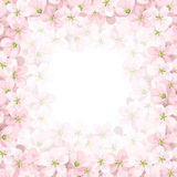 Vector background with pink apple flowers. Vector eps-10. Stock Image