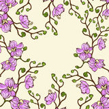 Vector background with pink orchid flowers Stock Photos
