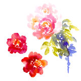 Vector background with pink watercolor bouquet Royalty Free Stock Photos