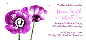 Vector background with purple watercolor poppies Royalty Free Stock Images