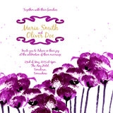 Vector background with purple watercolor poppies Stock Photo