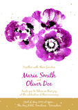 Vector background with purple watercolor poppies Royalty Free Stock Photo
