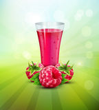 Vector background with a raspberry and a glass glass of raspberry Royalty Free Stock Photography
