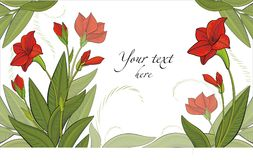 Vector background with red flowers. Vector drawing of the red flowers - ready to place your art or text Stock Photography