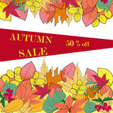 Vector background with red, orange, brown and yellow falling autumn leaves. Autumn concept of colorful leaves and berries stock illustration
