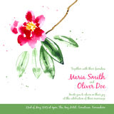 Vector background with red watercolor camellias Stock Photos