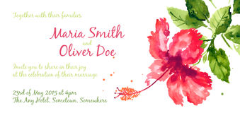 Vector background with red watercolor hibiscus Stock Image