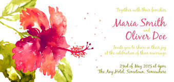 Vector background with red watercolor hibiscus Royalty Free Stock Images