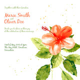 Vector background with red watercolor hibiscus Royalty Free Stock Photo