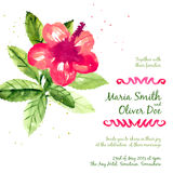 Vector background with red watercolor hibiscus Stock Images
