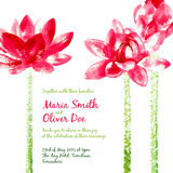Vector background with red watercolor lotus Stock Photos