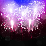Vector background with salute. Bright color fireworks Stock Photography