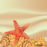 Vector  background with sea shells Stock Images