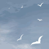 Vector background sea surface and flying seagulls Stock Photos