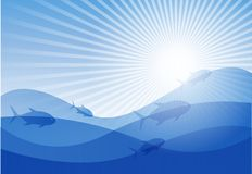 Vector background on a sea theme. Royalty Free Stock Image