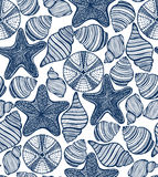 Vector background with shells starfishes urchins Royalty Free Stock Images