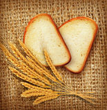 Vector background with slices of sliced bread (loaf) lying on th Stock Photo