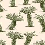 Pattern of the small palm trees Stock Photography