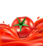 Vector background with splashes, waves of red tomato juice  Stock Images