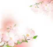 Vector background with spring flowers Royalty Free Stock Photos