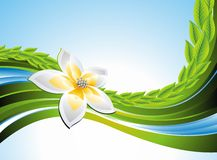 Vector background on a spring theme. Stock Photo