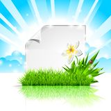 Vector background on a spring theme . Royalty Free Stock Photo