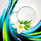 Vector background on a spring theme. Stock Images