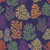 Vector background with stylized corals. Seamless pattern with corals on a purple background for design Stock Photos