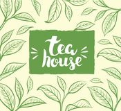Vector background with tea leaf. Royalty Free Stock Images