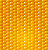 Vector background texture, yellow corn. design element Stock Photo